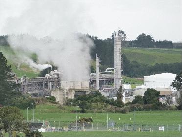 Waitara valley plant