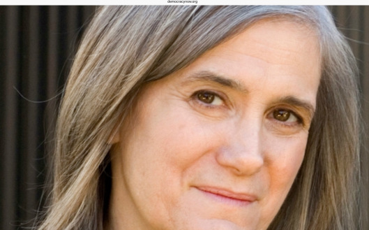 Breaking: Arrest Warrant Issued for Amy Goodman in North Dakota After Covering Pipeline Protest SEPTEMBER 10, 2016 DemocracyNow.org photo