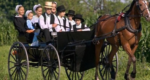 why-dont-amish-get-cancer-600x300