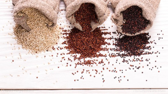 Red-Black-White-Quinoa-Seeds
