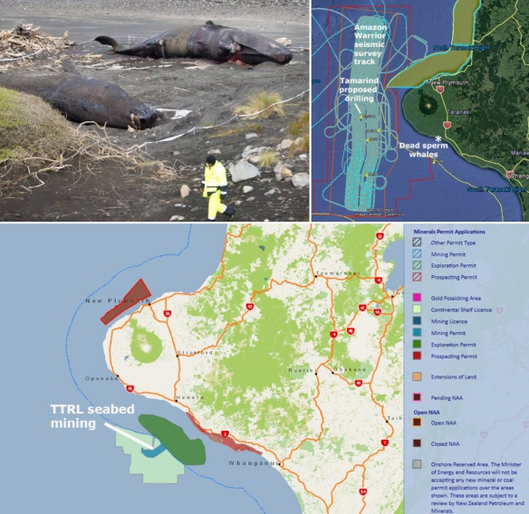 sperm whale Andy Jackson 28May18 stuff AW track mineral permits collage