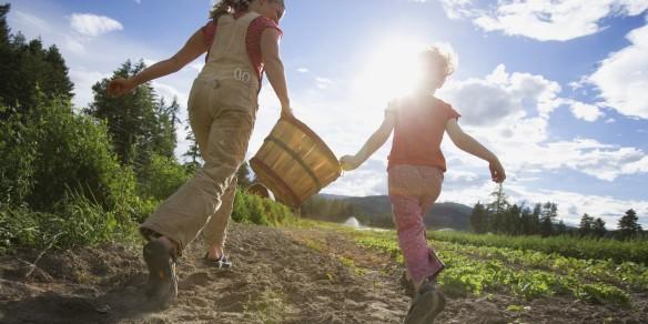 o-FAMILY-FARMS-facebook